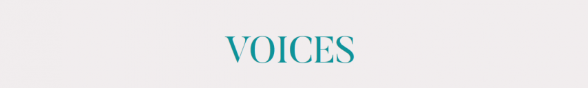 The VOICES project